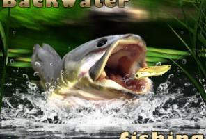 Pelkė Žvejyba