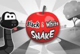 Czarny i biały wąż