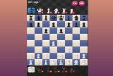 Dwa szachisty